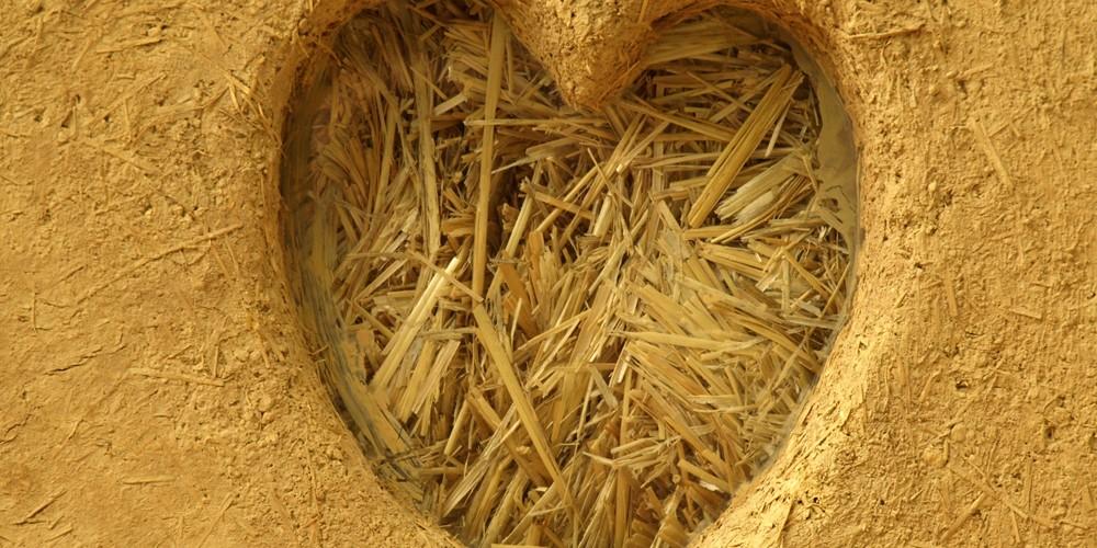 Corazón de tierra